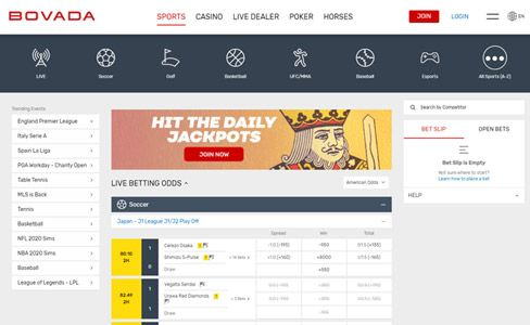 Bovada live betting limits off track advice for betting