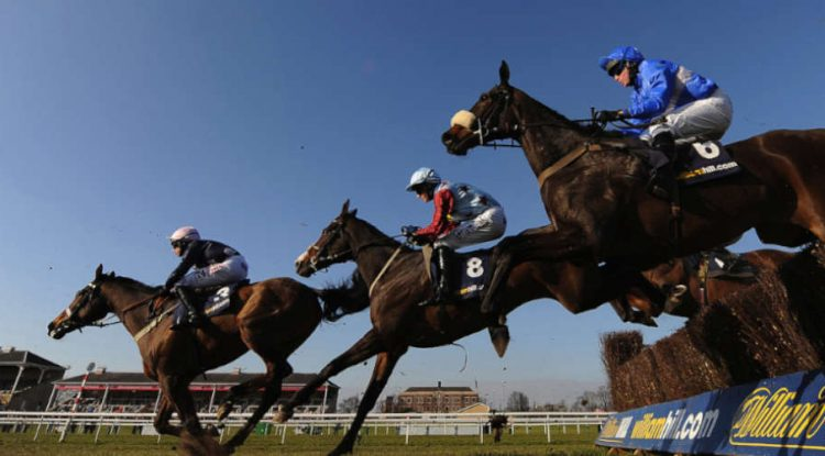 William Hill branded hurdles in a horse race.