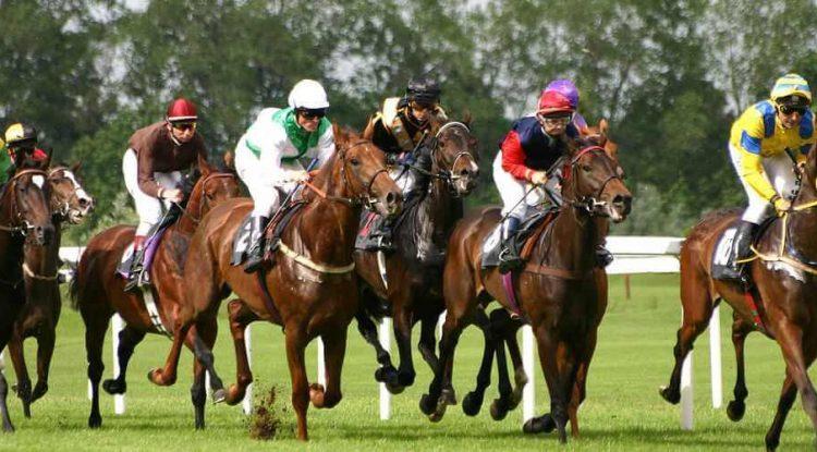 Jockeys on their horses racing
